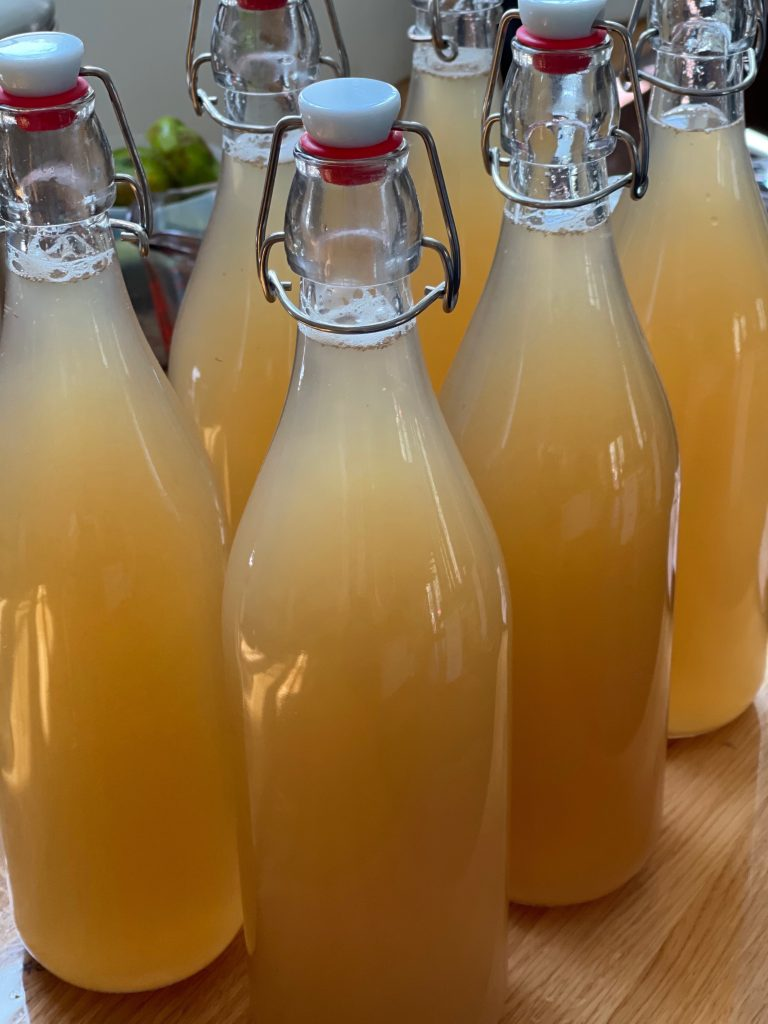 Ginger beer ready to ferment