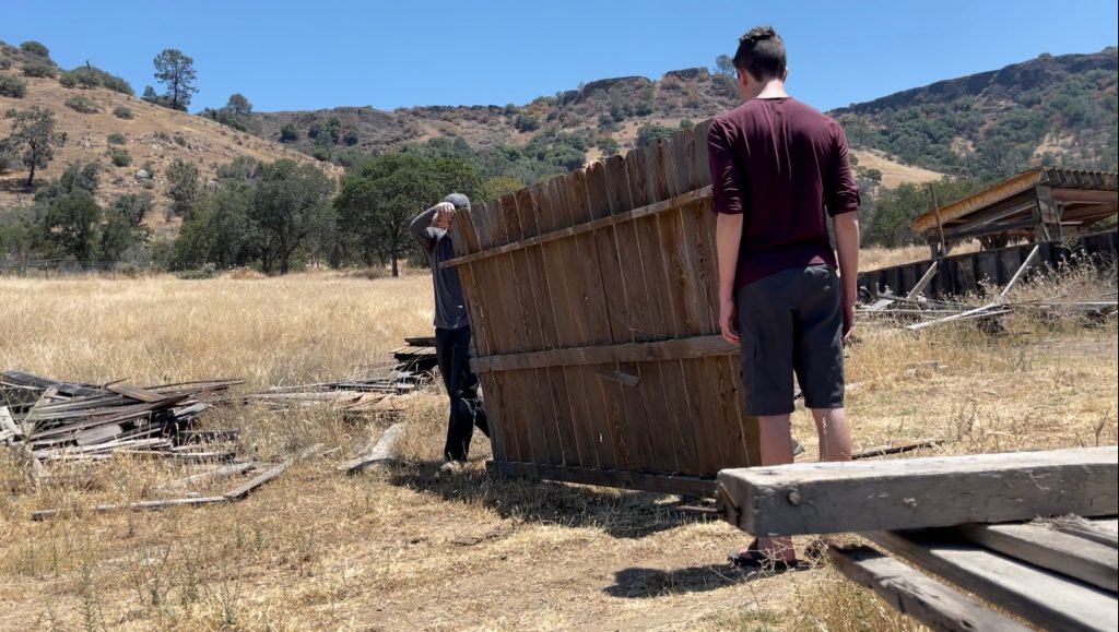 Old wood fencing for shiplap, making shiplap